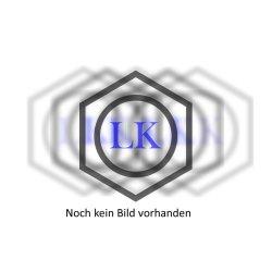IKA Plate RCT digital Magnetrührer  mit...